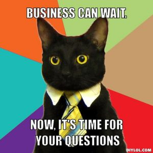 cat meme - business can wait - now it's time for your quetsions