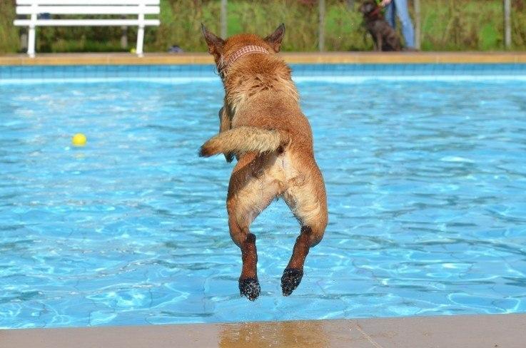 Mein Sprung ins kalte Wasser - ich gründe am 1.7.2016